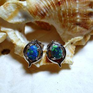 18k Australian Black Opal Earrings White Gold